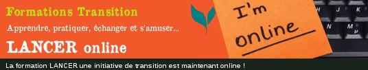 Lancer une initiative de Transition (version en ligne)