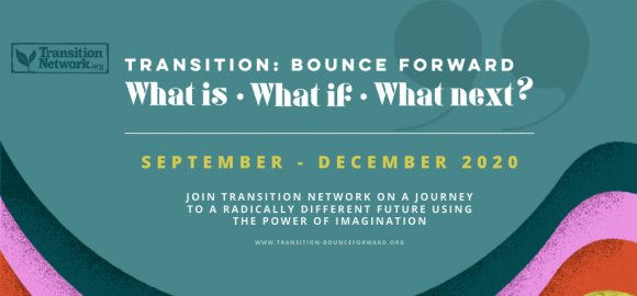 Transition: Bounce Forward – What Is
