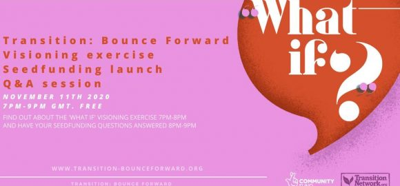 Transition: Bounce Forward – Visioning the Future and Seed-funding