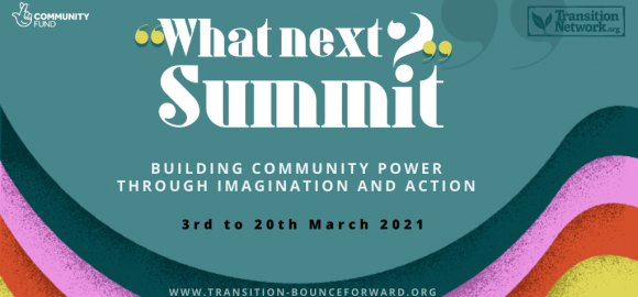 Transition: Bounce Forward – What Next Summit